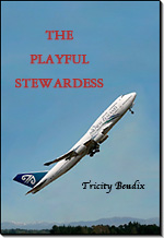 The Playful Stewardess